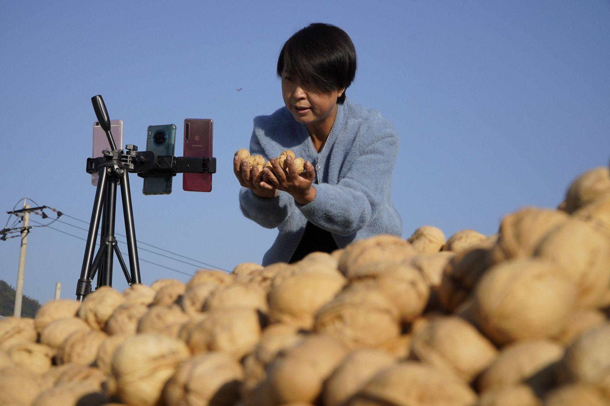Фермерский стрим. Женщина предлагает зрителям грецкие орехи через прямую трансляцию со сбора урожая