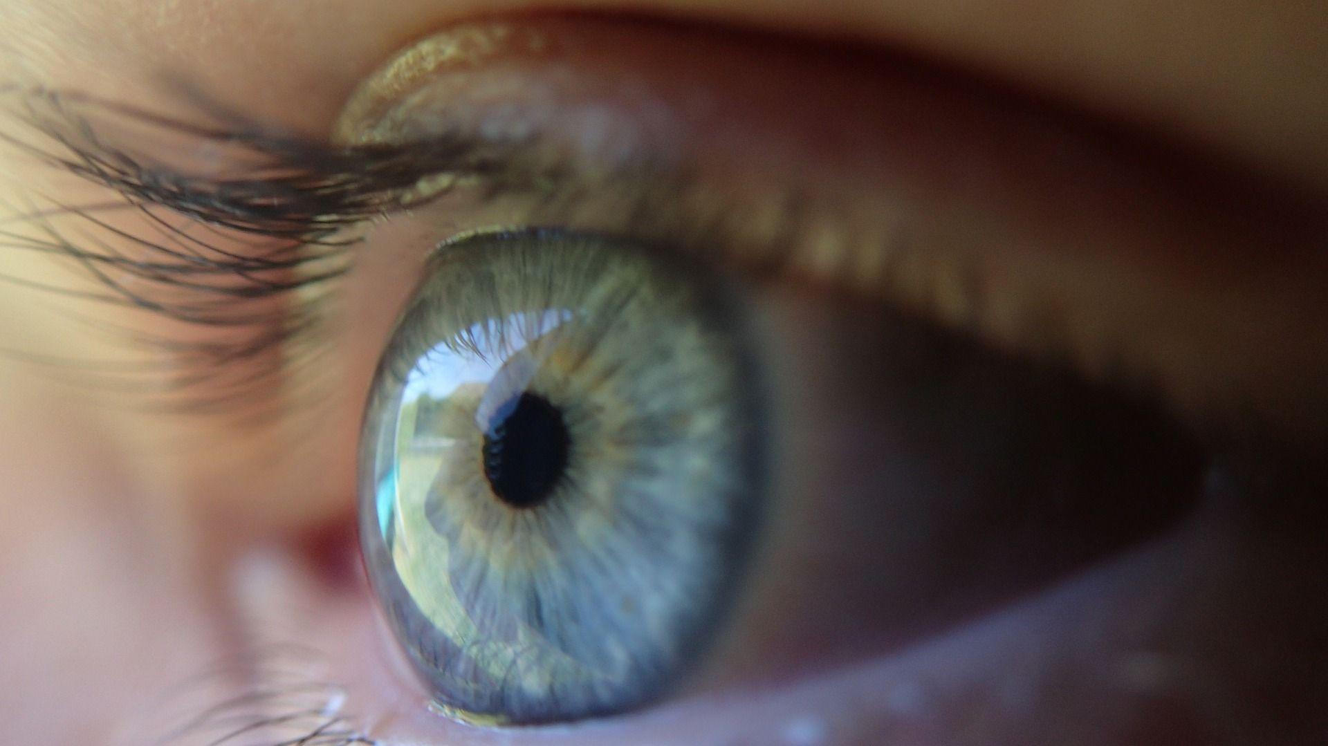 Стартап обещает криптовалюту за скан радужной оболочки глаза