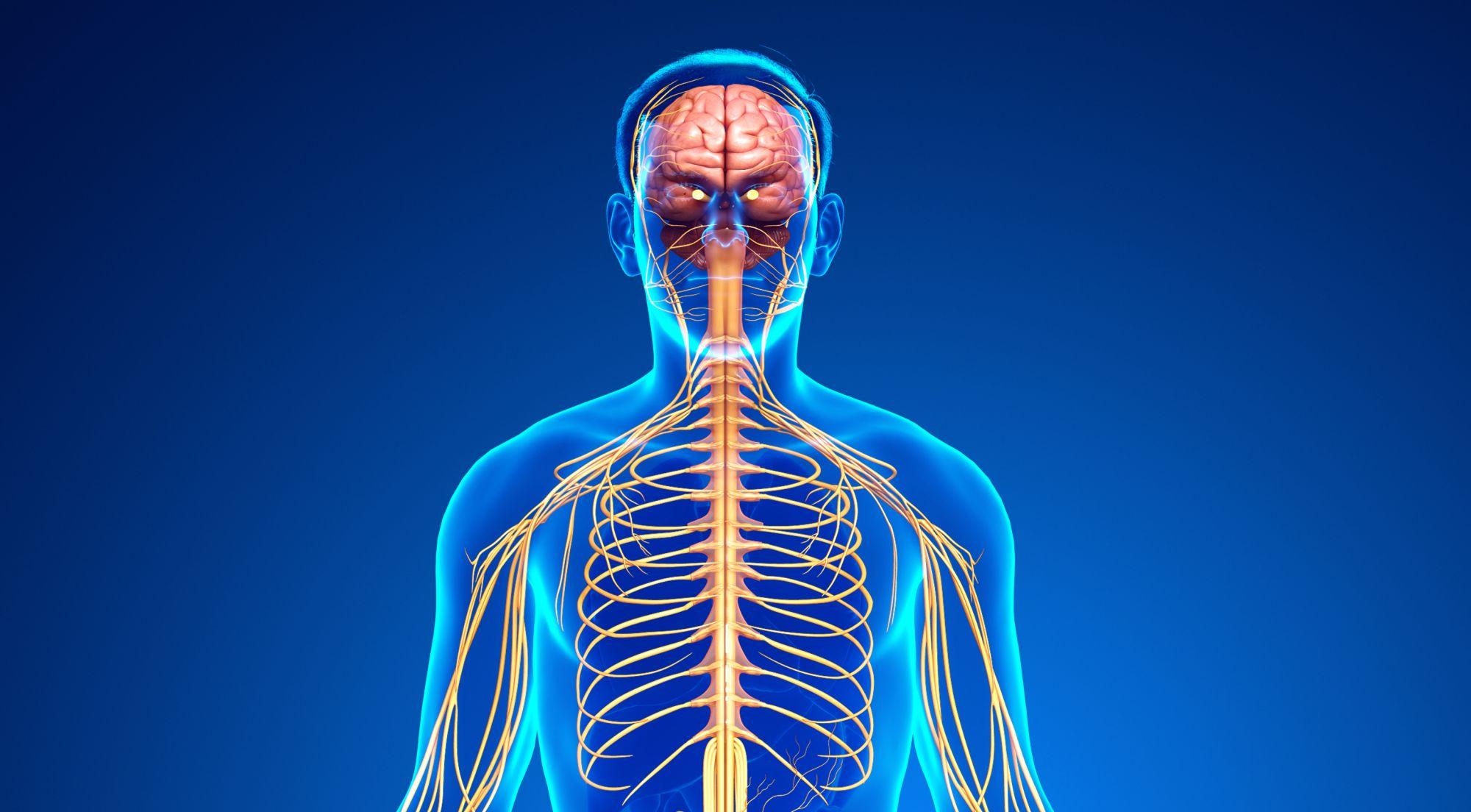 Тюнинг тела