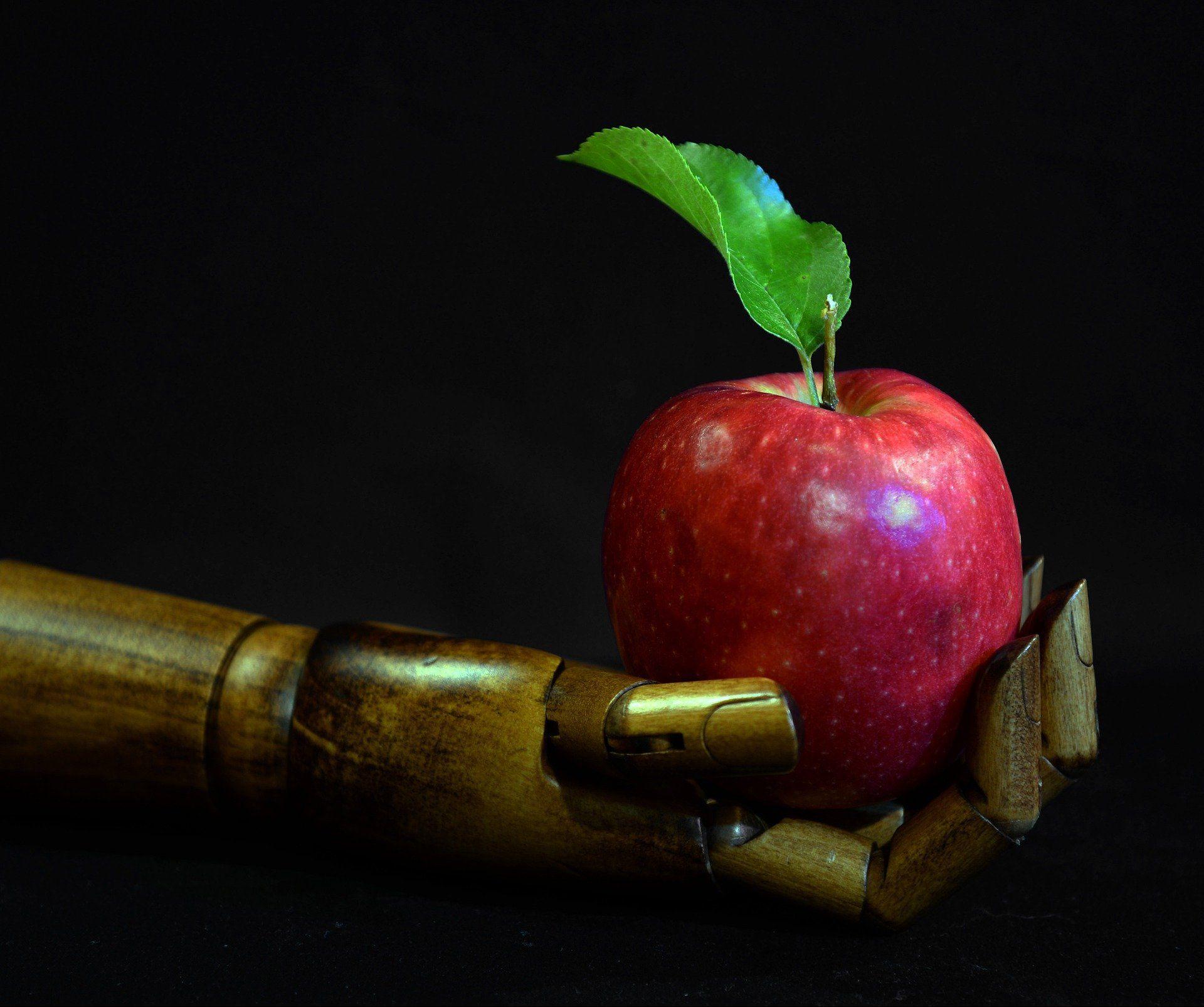 Дроны оставят без работы сборщиков фруктов