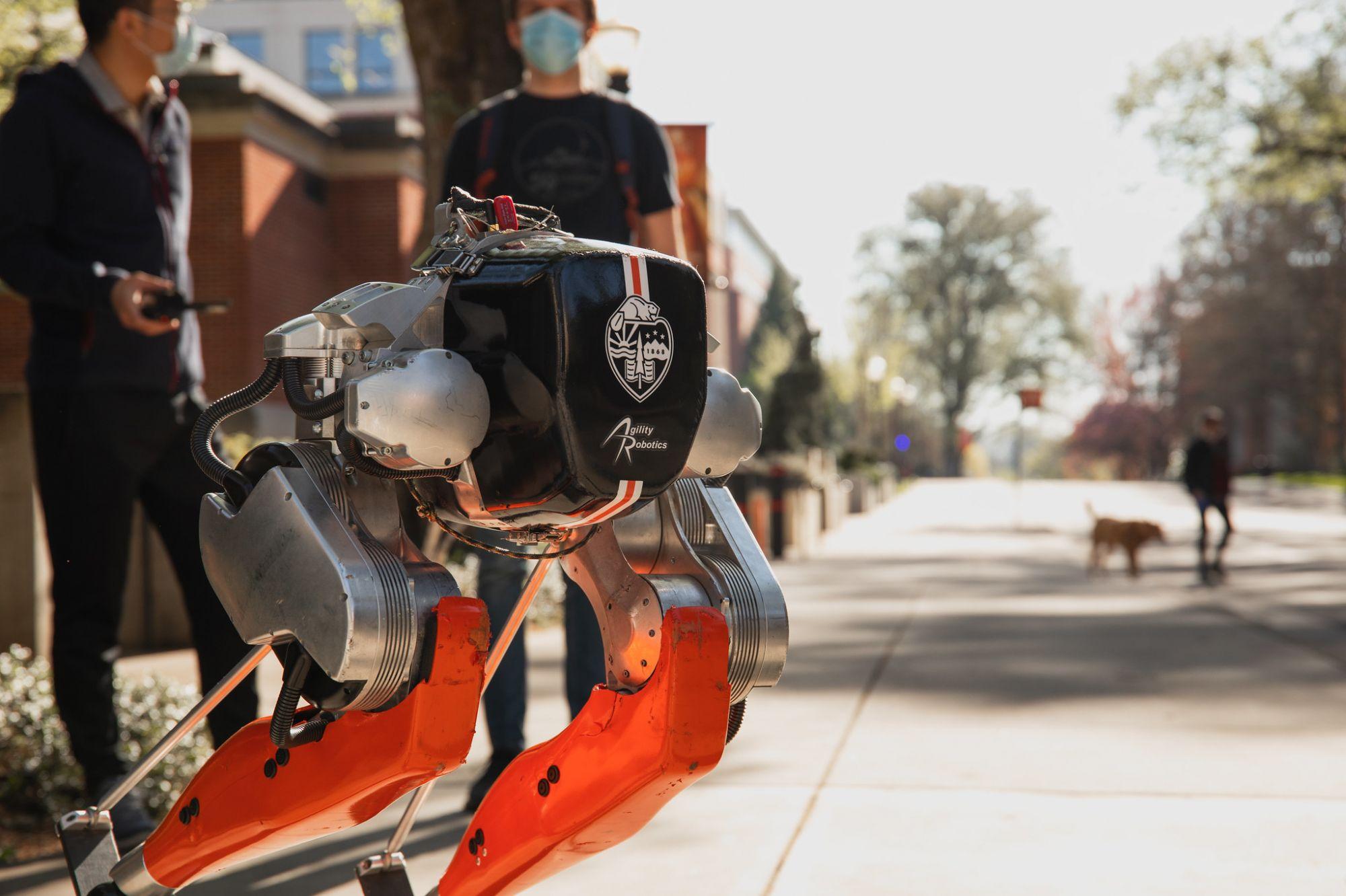 Двуногий робот <i>Cassie </i>впервые пробежал 5 километров