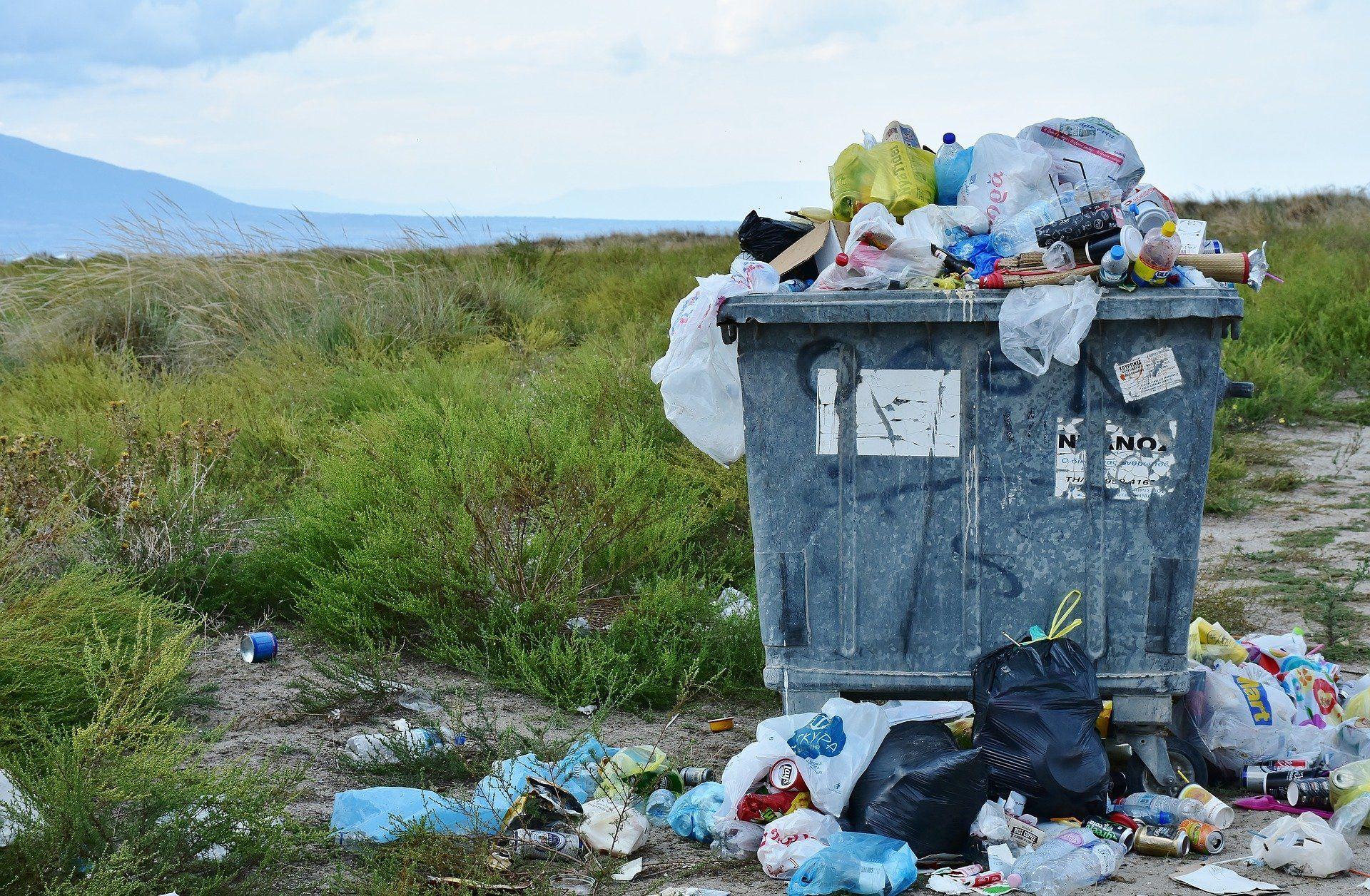 Нейросеть будет штрафовать россиян за выброшенный мусор