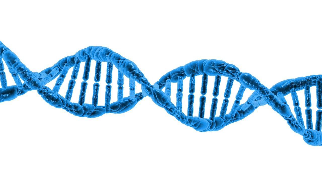 В ДНК научились записывать информацию